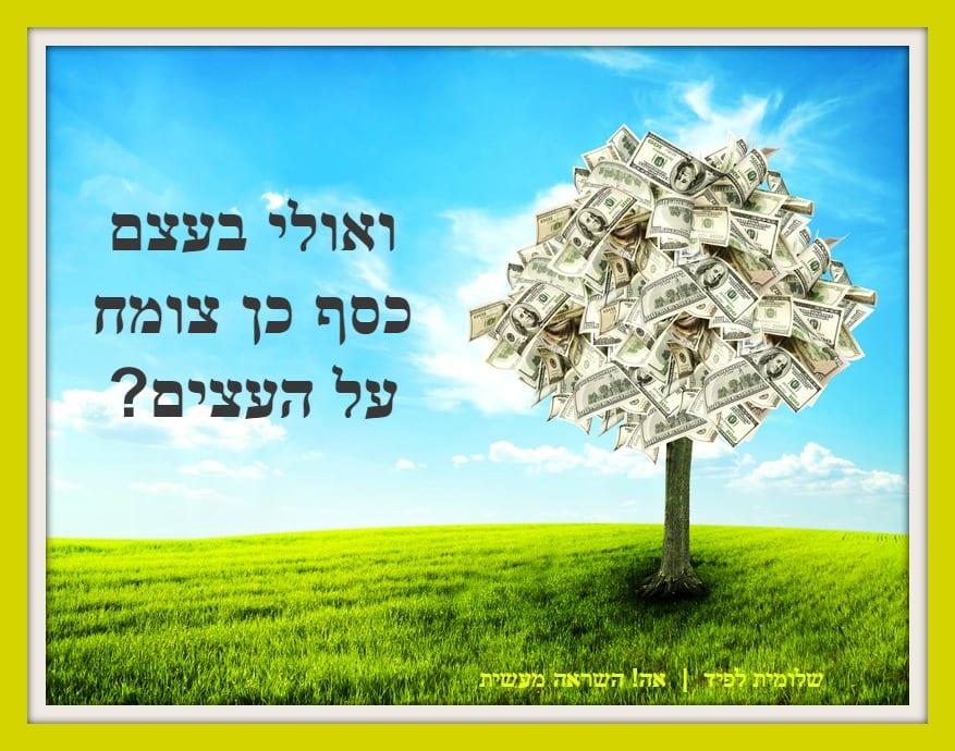 שינוי אמונות מגבילות בנושא כסף