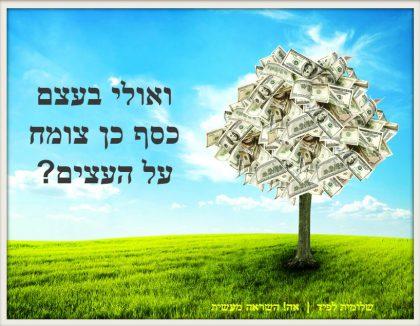 ואולי בעצם כסף כן צומח על העצים?